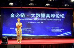 金必链大数据高峰论坛在京举行
