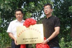 嘉祥举行主要农作物生产全程机械化飞防现场