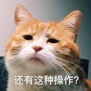 <b>假期忧虑症别着急,就让好基友宇瞻黑豹SSD来帮忙吧</b>