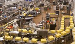 如何杀灭食品生产车间及洁净区的霉菌